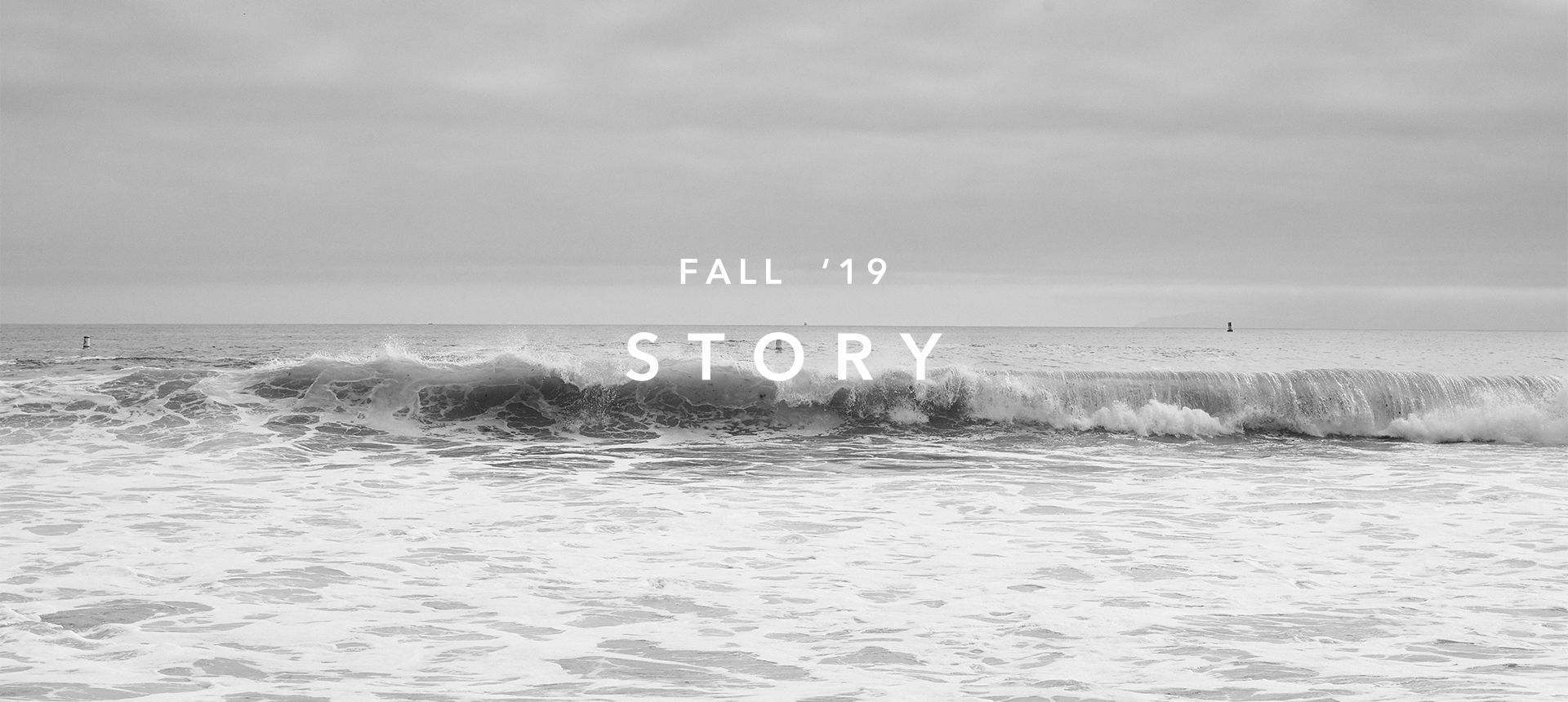 FALL19 STORIES